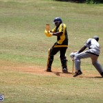 Cricket Premier & First Division July 1 2015 (2)