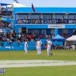 Cup Match Day 2 Bermuda, July 31 2015-143