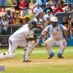 Cup Match Day 2 Bermuda, July 31 2015-144