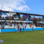 Cup Match Day 2 Bermuda, July 31 2015-39