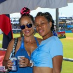 Cup Match Day 2 Bermuda, July 31 2015-63