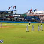 Cup Match Day 2 Bermuda, July 31 2015-64