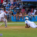 Cup Match Day 2 Bermuda, July 31 2015-73