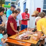 Groundswell Lionfish Tournament Bermuda, July 18 2015-11