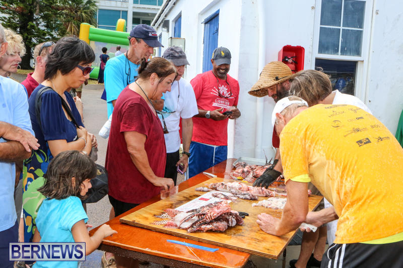 Groundswell-Lionfish-Tournament-Bermuda-July-18-2015-11