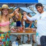 Groundswell Lionfish Tournament Bermuda, July 18 2015-14