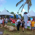 Groundswell Lionfish Tournament Bermuda, July 18 2015-3