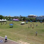 Live Free Family Fun Day Bermuda, July 4 2015-7