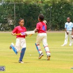 Mini Cup Match Bermuda, July 21 2015-55