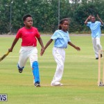 Mini Cup Match Bermuda, July 21 2015-59