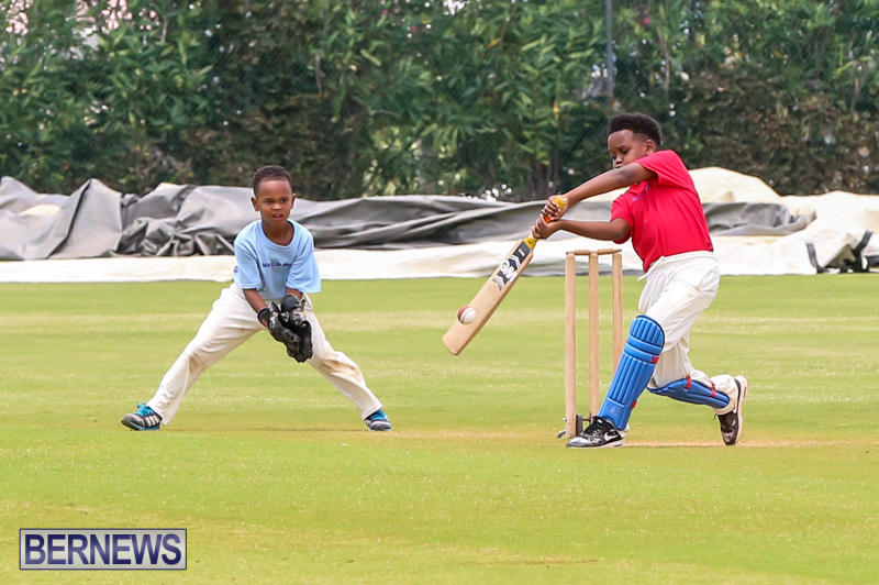 Mini-Cup-Match-Bermuda-July-21-2015-60