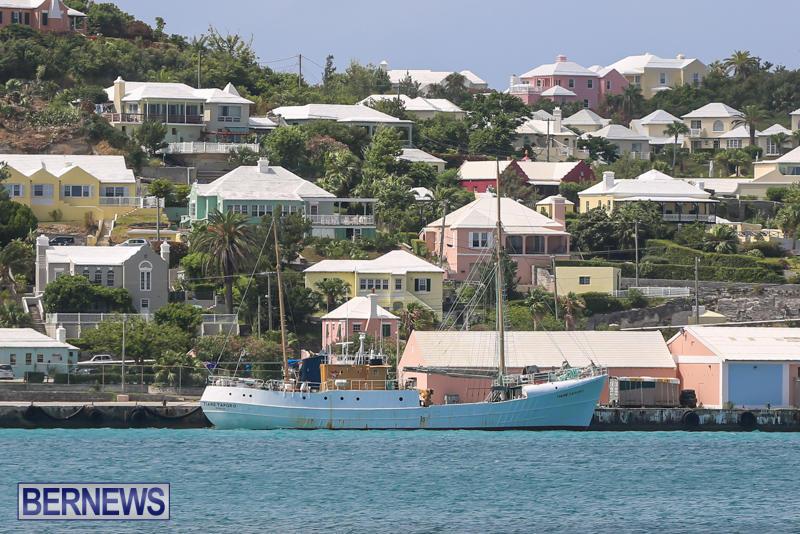 Tiare Taporo In Bermuda, July 15 2015-1