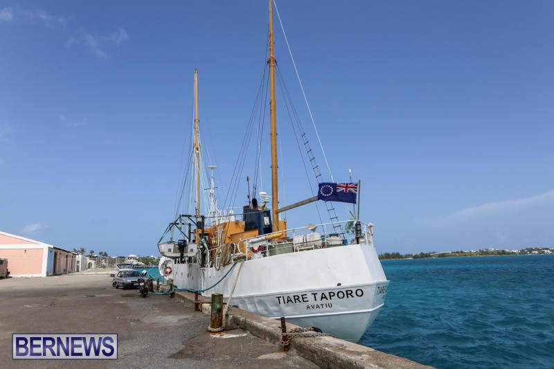 Tiare Taporo In Bermuda, July 15 2015-4