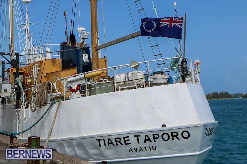 Tiare Taporo In Bermuda, July 15 2015-5