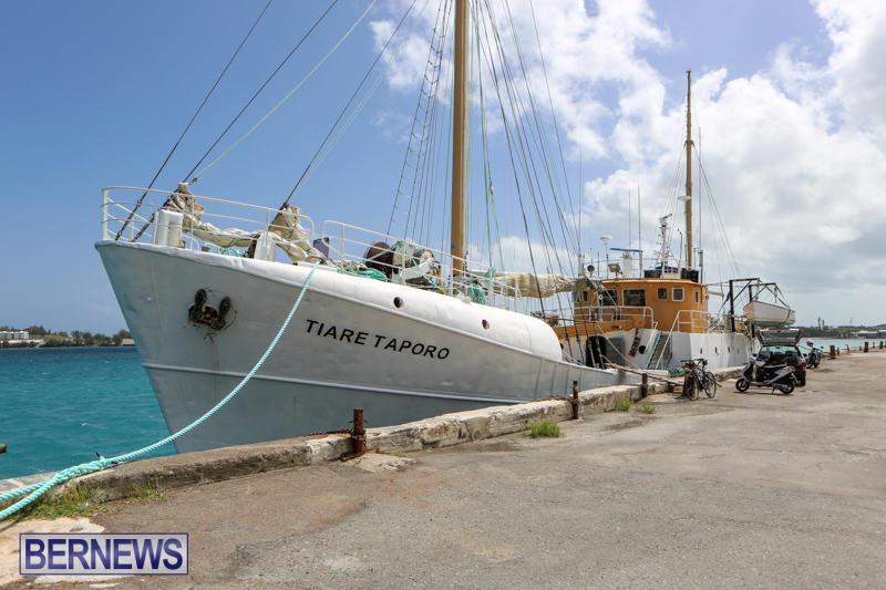 Tiare Taporo In Bermuda, July 15 2015-6