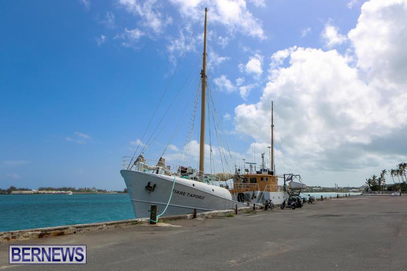 Tiare Taporo In Bermuda, July 15 2015-7