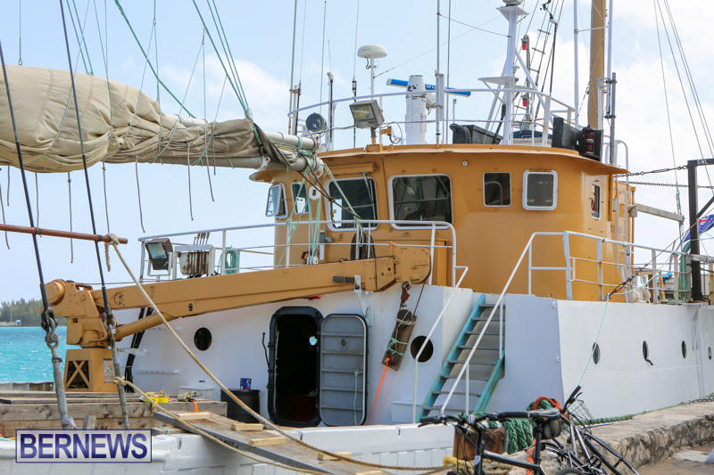 Tiare Taporo In Bermuda, July 15 2015-8