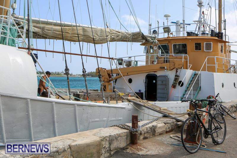 Tiare Taporo In Bermuda, July 15 2015-9
