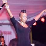 Bermuda Salute Concert 2015 (100)