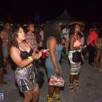 Bermuda Salute Concert 2015 (12)