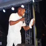 Bermuda Salute Concert 2015 (123)