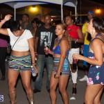 Bermuda Salute Concert 2015 (133)