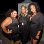Bermuda Salute Concert 2015 (14)