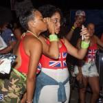 Bermuda Salute Concert 2015 (29)