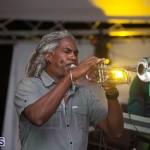 Bermuda Salute Concert 2015 (96)