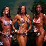 Night Of Champions Awards Bodybuilding Bermuda, August 15 2015-41