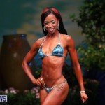 Night Of Champions Bodybuilding Fitness Bermuda, August 15 2015-32