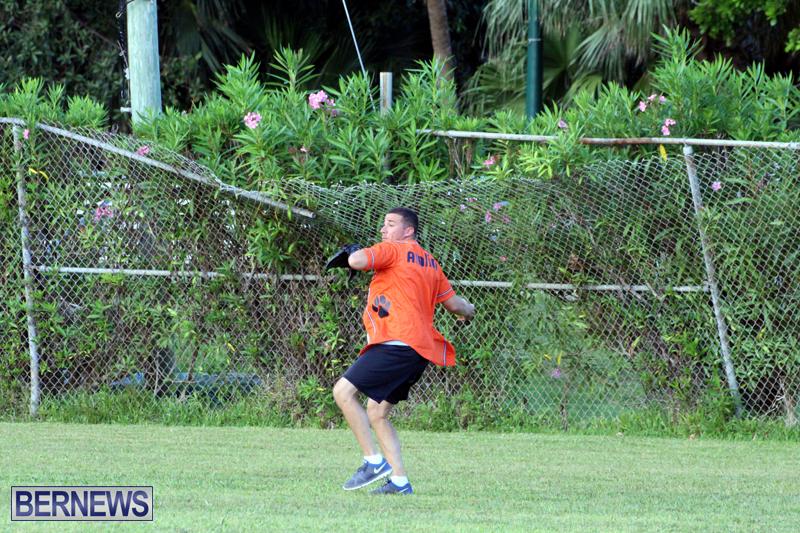 Softball-August-19-2015-8
