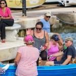 Bermuda Pilot Gig Club, September 20 2015-62
