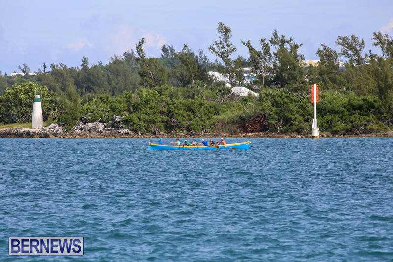Bermuda-Pilot-Gig-Club-September-20-2015-84
