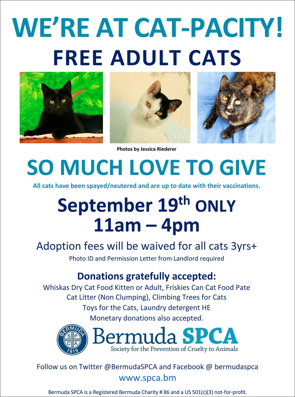 Cat-pacity poster Bermuda September 2015
