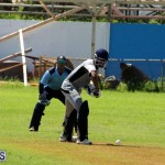 Cricket Bermuda September 8 2015 (10)