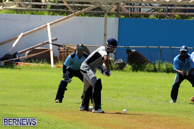 Cricket-Bermuda-September-8-2015-10