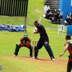 Cricket Bermuda September 8 2015 (15)