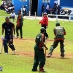 Cricket Bermuda September 8 2015 (17)