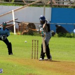 Cricket Bermuda September 8 2015 (4)