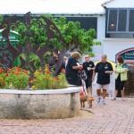 International Walk Together For Answering TTP Bermuda September 2015 ls (14)