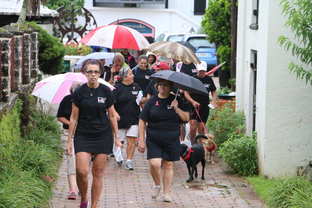 International-Walk-Together-For-Answering-TTP-Bermuda-September-2015-ls-8