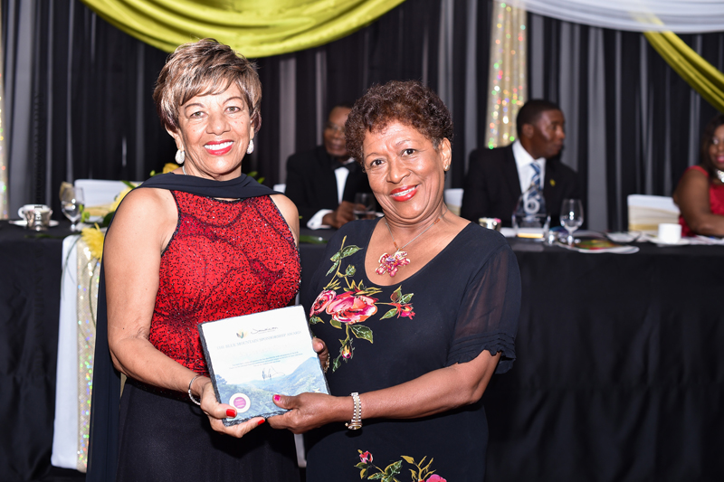 Jamaican-Assoc-Bda-Awards-Banquet-Bermuda-September-2015-73