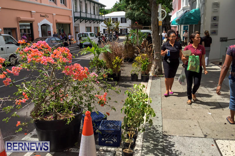 PARKing-Day-Bermuda-September-18-2015-14
