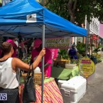 PARKing Day Bermuda, September 18 2015-8
