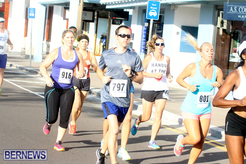 Running-of-the-Bulls-Bermuda-September-2015-10