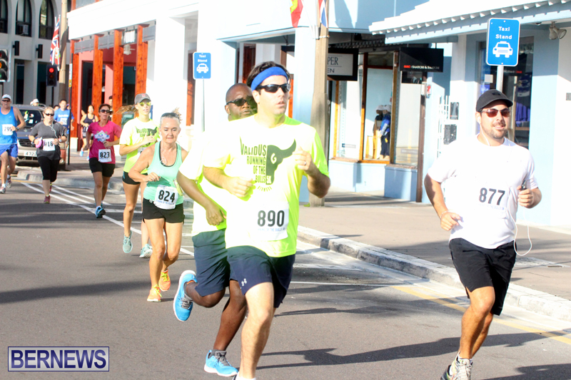 Running-of-the-Bulls-Bermuda-September-2015-11
