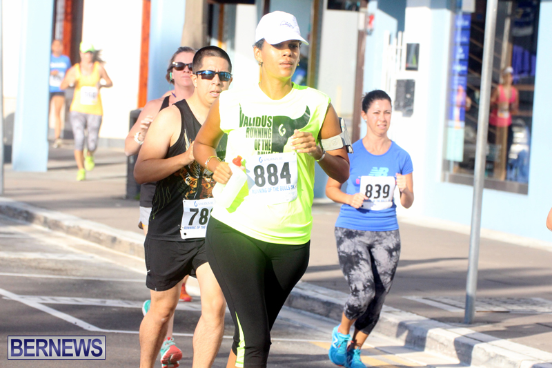 Running-of-the-Bulls-Bermuda-September-2015-13