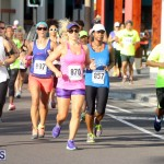 Running of the Bulls Bermuda September 2015 (14)