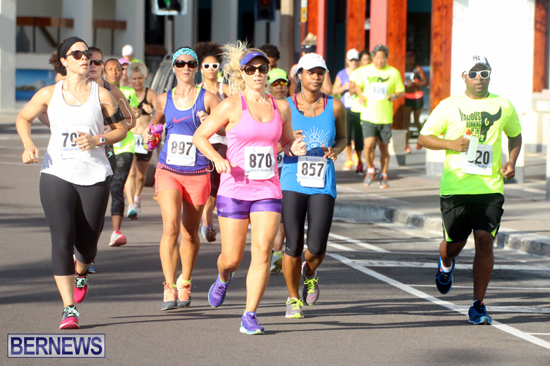 Running-of-the-Bulls-Bermuda-September-2015-14